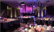 UPMC Gala